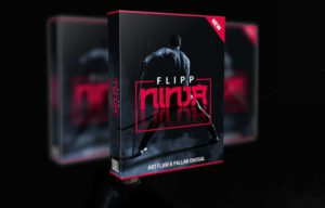flipp ninja Review - main image