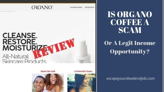 is organo coffee a scam