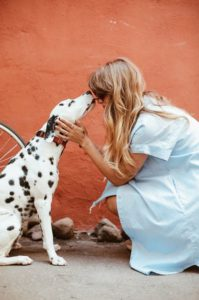 dog and pet sitter together