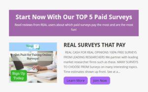 survey momma website snippet